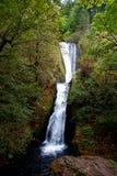 Caídas de Bridalveil de Oregon Imágenes de archivo libres de regalías