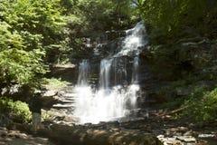 Caídas de Ganoga, Ricketts Glen State Park con el caminante Imagen de archivo libre de regalías