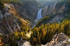 Caídas de Grand Canyon, parque nacional de Yellowstone Foto de archivo libre de regalías