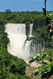 Caídas de Iguassu, el Brasil Imágenes de archivo libres de regalías