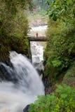 Caídas de Iguassu, la serie más grande de cascadas del mundo, lado de Argenitna imagen de archivo libre de regalías