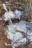 Caídas de Kaaterskills y invierno del árbol de abedul Fotografía de archivo