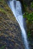Caídas de la cola de caballo de Oregon Foto de archivo