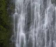 Caídas de Marymere, parque nacional olímpico, Washington imagenes de archivo