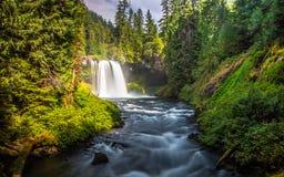 Caídas de Oregon Fotos de archivo