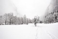 Caídas de Truemmelbach - invierno Fotos de archivo libres de regalías