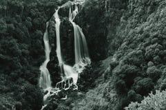Caídas de Waipunga Fotografía de archivo libre de regalías