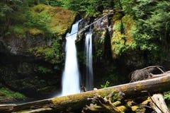 Caídas del agua del Monte Rainier imágenes de archivo libres de regalías