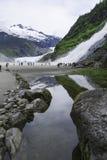 Caídas del glaciar y de la pepita de Mendenhall fotos de archivo