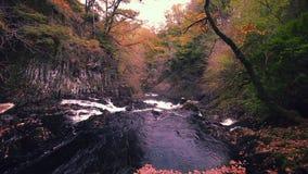 Caídas del trago en el otoño en el parque nacional de Snowdonia, Reino Unido almacen de video