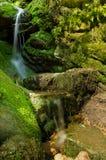 Caídas del verde Fotografía de archivo libre de regalías