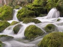 Caídas en el río de la montaña Imágenes de archivo libres de regalías