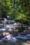 Caídas jamaicanas 2 del río Imagen de archivo libre de regalías