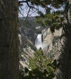 Caídas más inferiores de Yellowstone Foto de archivo