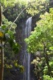Caídas sagradas en Kauai, Hawaii imagenes de archivo