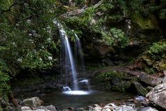 Caídas y rododendros de la gruta Fotografía de archivo libre de regalías