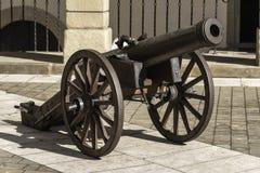 cañón Imagen de archivo libre de regalías