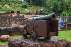 cañón Foto de archivo libre de regalías