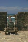 Cañón colorido que señala al horizonte Fotografía de archivo libre de regalías