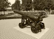 Cañón de la guerra civil blanco y negro Imagen de archivo