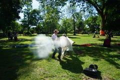 Cañón 62 del humo Foto de archivo