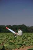 Cañón del propano en un campo con las cosechas jovenes imagen de archivo libre de regalías
