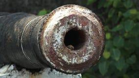 cañón histórico viejo, restos de la artillería, puerto de Kochi almacen de metraje de vídeo
