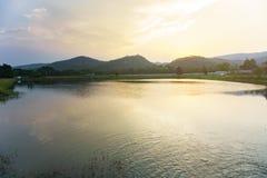 Caña de azúcar y sol amonestadores del río del soporte Imágenes de archivo libres de regalías