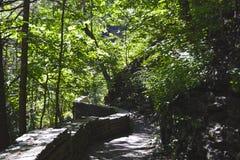 Cañada de Watkins, parque de estado de NY Foto de archivo libre de regalías