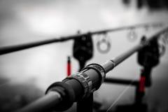 Cañas de pescar de la carpa Fotos de archivo