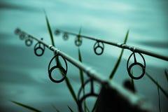 Cañas de pescar de la carpa Fotografía de archivo libre de regalías