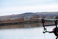 Cañas de pescar de la carpa Imagen de archivo libre de regalías