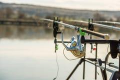 Cañas de pescar de la carpa Fotos de archivo libres de regalías
