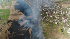 Cañas del fuego en el río Encuesta a?rea metrajes