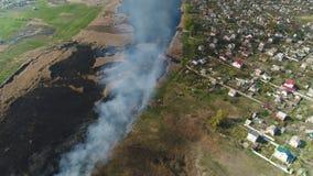 Cañas del fuego en el río Encuesta a?rea almacen de metraje de vídeo