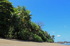 Caño Island. Shore of Caño Island, Osa Peninsula, Costa Rica Stock Photo