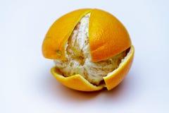 Cała pomarańcze na białym tle z rżniętą łupą zamkniętą w górę zdjęcie royalty free