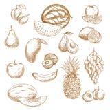 Całe i przekrawać świeżych owoc rocznika nakreślenia ikony royalty ilustracja