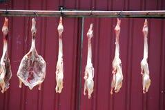 Całe nieżywe surowe kaczki w przygotowaniu do kucharstwa Zdjęcia Royalty Free