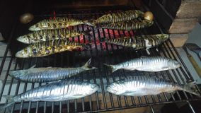 Całość ryba na grillu Zdjęcia Stock