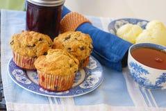 Całość Zbożowych czarnych jagod Muffins Obraz Royalty Free
