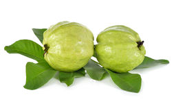 Cały świeży Guava z trzonem opuszcza na bielu Obrazy Stock