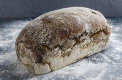 Cały bochenek żyto chleb na mące w kuchennej powierzchni przeciw szarości ścianie zdjęcia stock