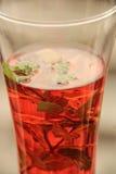 Cały szkło cranberry sok z mennicą obraz stock
