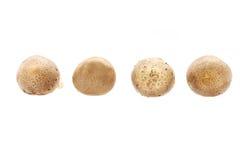 Całe surowe Shitake pieczarki Fotografia Stock