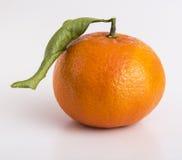 Całe tangerine lub clementine owoc Zdjęcia Stock