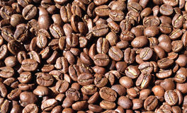 Całej fasoli kawa Zdjęcia Stock
