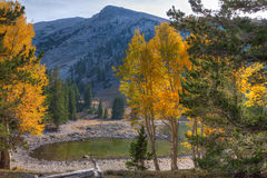 CA-Great Basin National Park-Alpine Lakes Trail. Nevada-Great Basin National Park-Alpine Lakes Trail. Autumn in Great Basin is a most colorful event, which makes Stock Photos