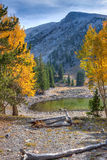 CA-Great Basin National Park-Alpine Lakes Trail. Nevada-Great Basin National Park-Alpine Lakes Trail. Autumn in Great Basin is a most colorful event, which makes Stock Images