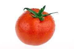 całkowicie odosobniony pomidor Fotografia Stock